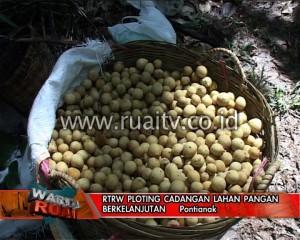 RTRW Ploting cadangan Lahan pangan berkelanjutan